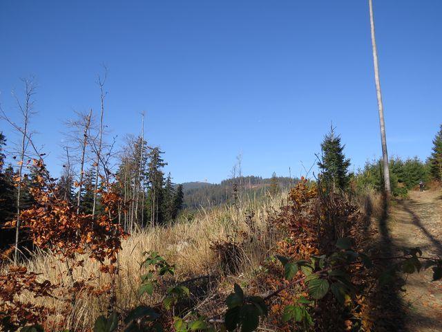 převýšení na trase k vrcholku Lysé hory bylo asi 700 metrů