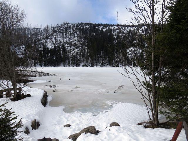Prášilské jezero v zimě 2016