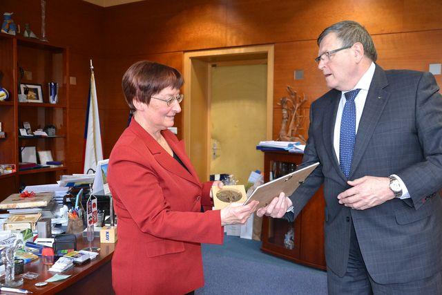 medaile za výraznou propagaci regionu Vysočina