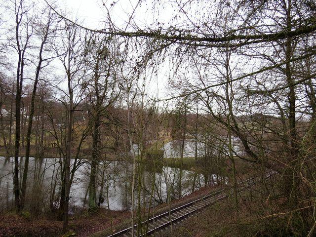 v popředí rybník Ohnsorg, vzadu Kaláškův rybník, kde stávala vodní tvrz
