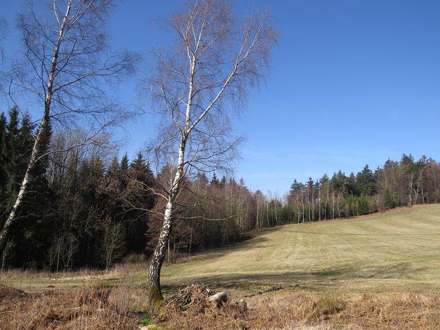 Na Horách - tak se jmenuje lokalita poblíž obce Stáj