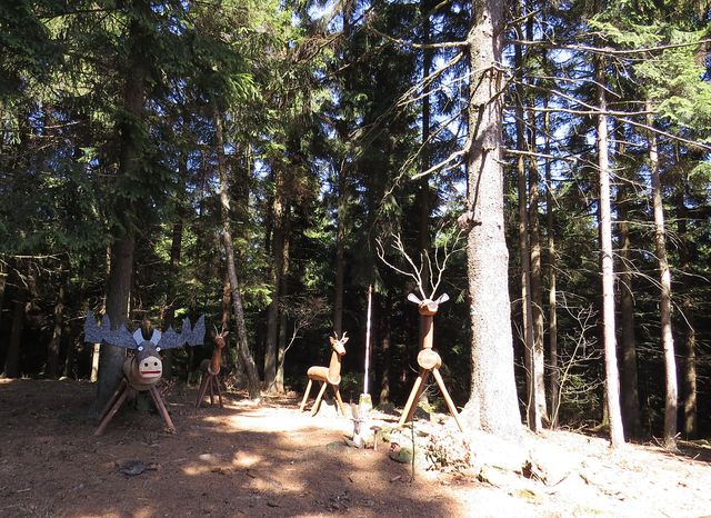 toto stádo čeká na poutníky na Dědkovské hoře