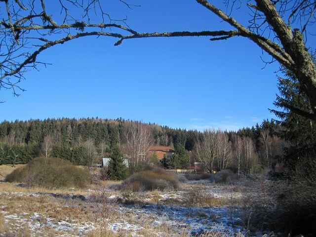výhled z Dolních Hutí k lesům v okolí Skalky