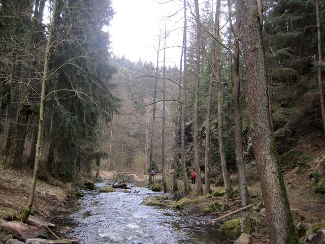 říčka Brtnice nedaleko před soutokem s Jihlavou