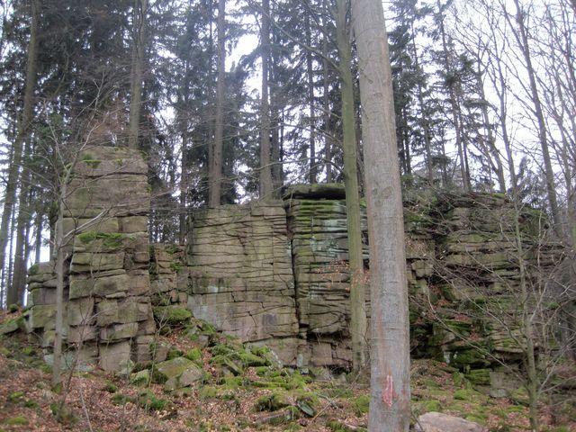 okolní les je starý asi 140 let