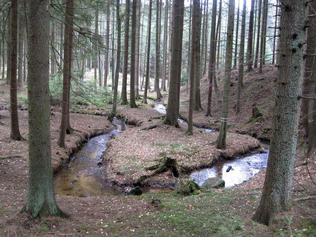 meandry Dolnohuťského potoka