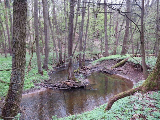 údolí Rouchovanky je součástí Přírodního parku Rokytná