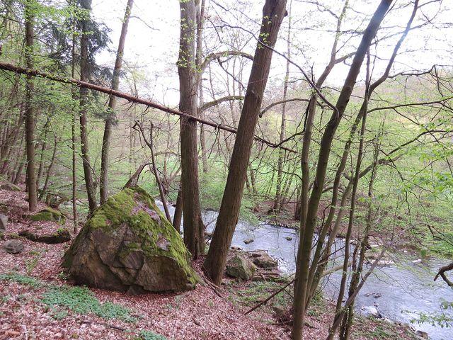 údolí Rokytné je ráj pro turisty-samotáře