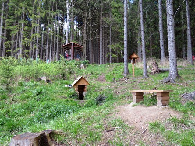 Lesní studánka