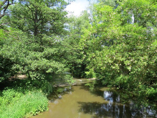 řeka Rokytná u Budkovic