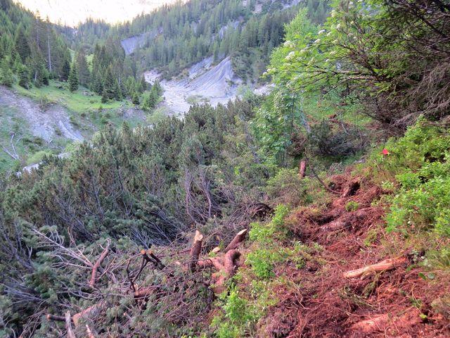 povodeň zlikvidovala cestu kolem potoka, značka nás vedla po úbočí hor provizorní stezkou