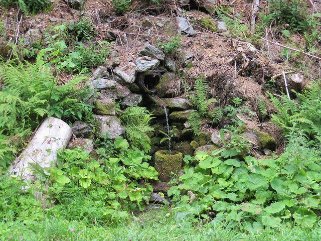 pramen Kyslá voda u říčky Hronček