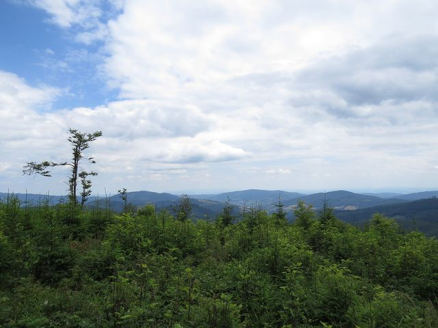 výhled z vrcholu Rozsypok