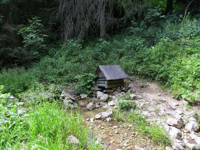 vývěr potoka tekoucího Zejmarskou dolinou