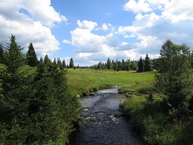 Luzenský potok pod Březníkem