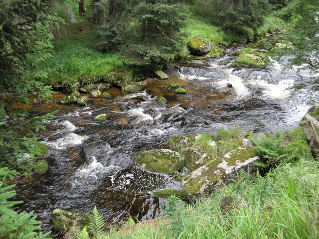 Roklanský potok z modravského mostu u pivovaru