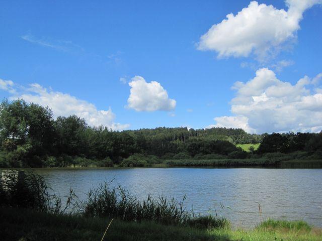rybník Dolňák u Bílého Kamene