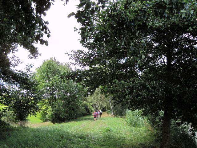 procházka po břehu rybníka