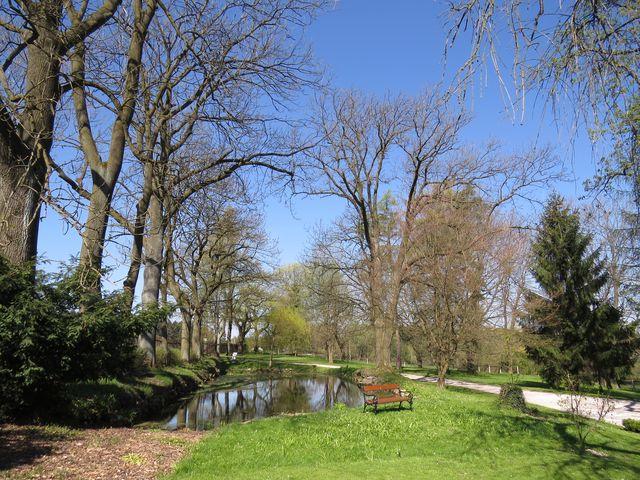 u zámečku je anglický park s mohutnými stromy