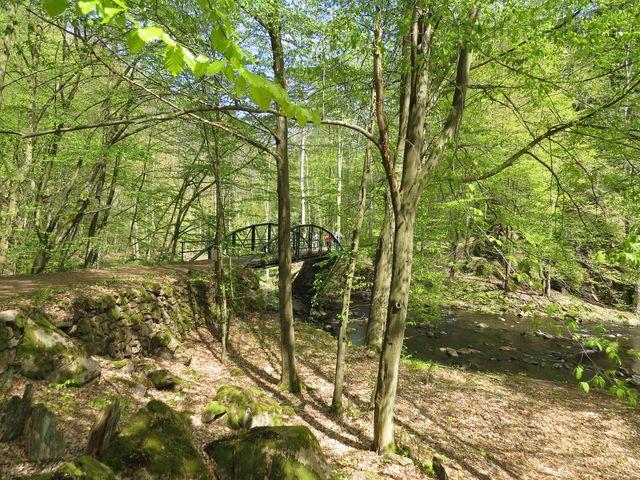 most přes Chrudimku poblíž zříceniny Strádov