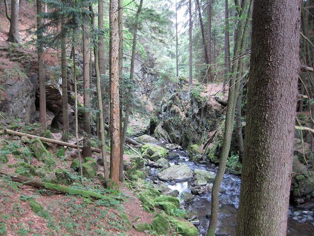 soutěska divoké řeky Doubravy
