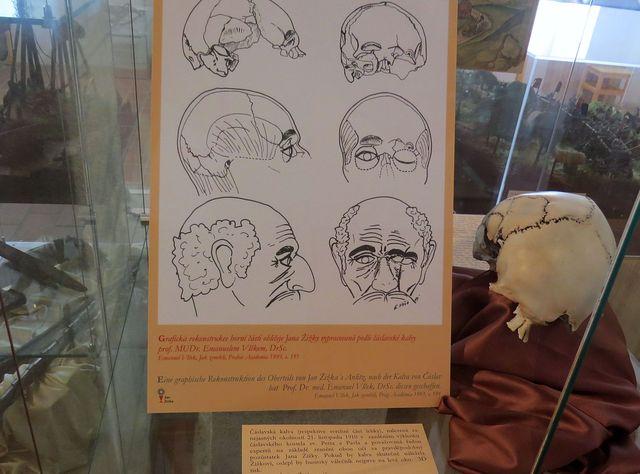 grafická rekonstrukce horní části obličeje Jana Žižky vypracovaná podle čáslavské kalvy Dr. Emanuelem Vlčkem