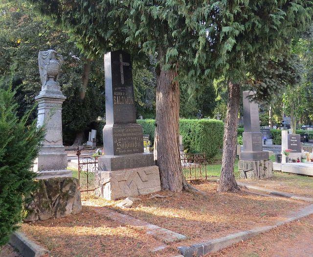 hrob rodiny Salomonových - Leopold Salomon, soukeník, byl v roce 1900 jmenován čestným občanem jihlavským