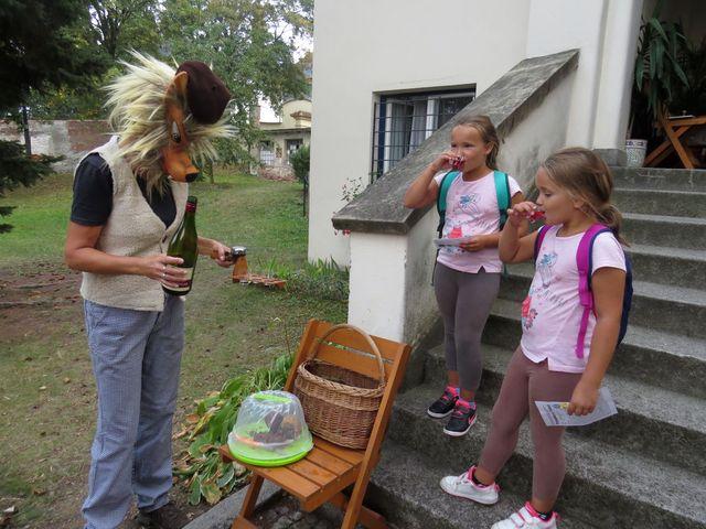 hodný vlk přivítal děvčata na Gorazdově náměstí přípitkem limonádou z léčivých bylinek