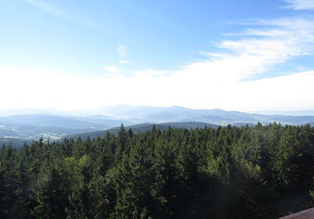 výhled na Praděd, Šerák, Králický Sněžník a další vrchy z rozhledny na Borůvkové hoře