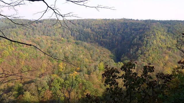 výhled do údolí Oslavy; foto L. Tomáš