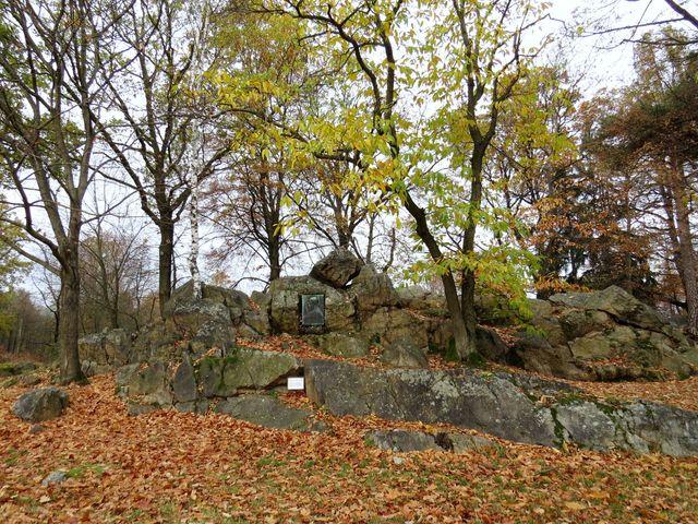 stáří křemencové skalky odhadují odborníci na 570 milionů let