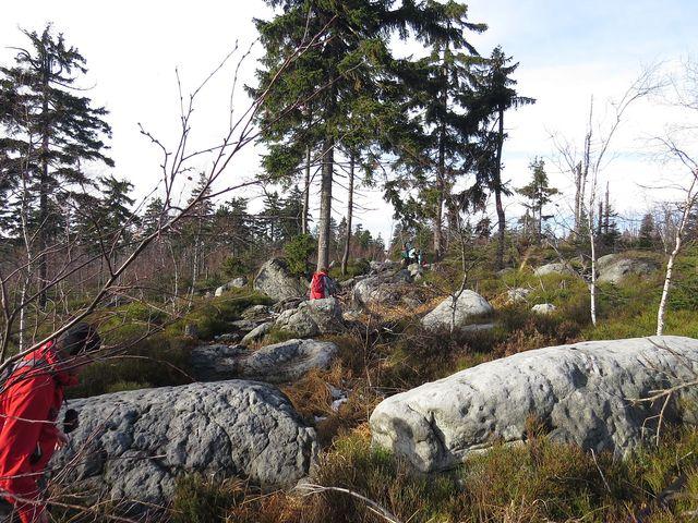 Skalniak je s výškou 915 m n.m. nejvyšším vrcholem této části Stolových hor