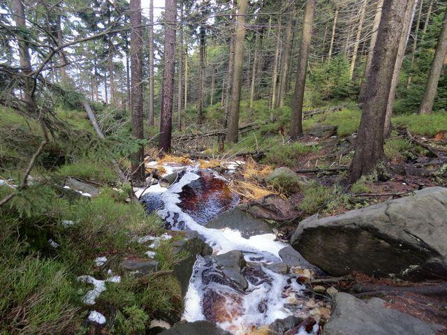 zpěněný potok kvapí do údolí...