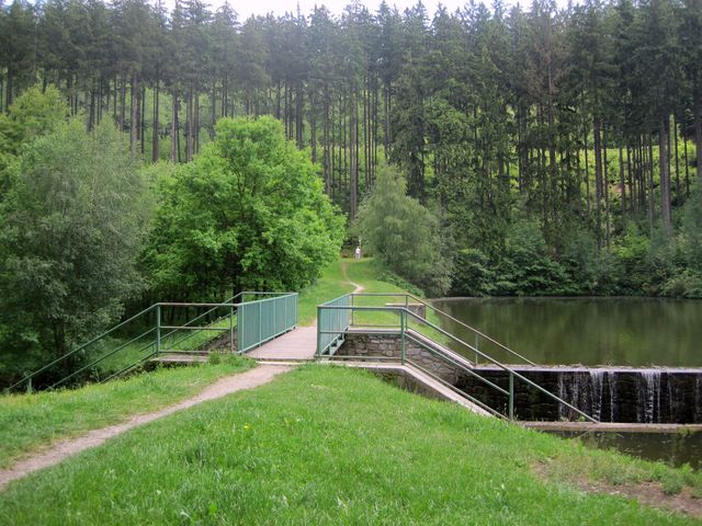 od směrovníku Pod Homolí zatáčí stezka na břeh rybníka Peklo