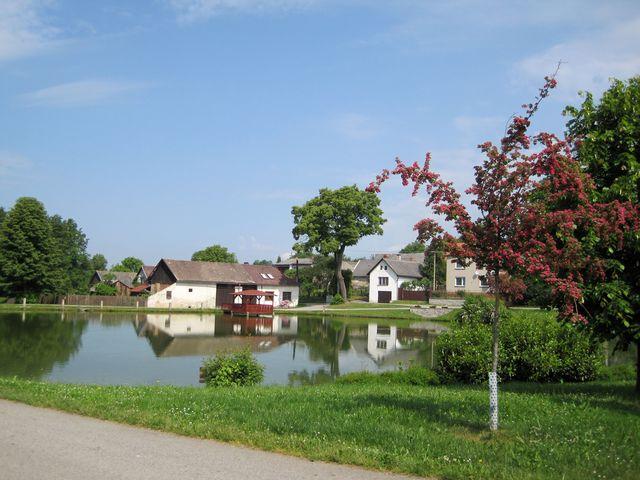 Dolní rybník v Kalištích