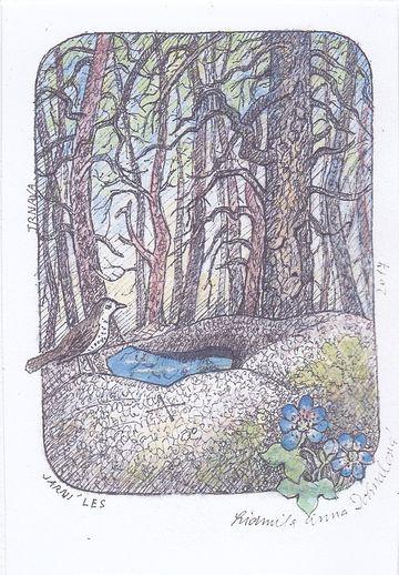 Jarní les v okolí Trnavy u Třebíče, autorka Lidmila Anna Dohnalová