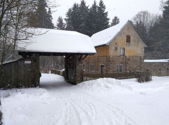 zima v henčovském lesíku; foto J. Korbel
