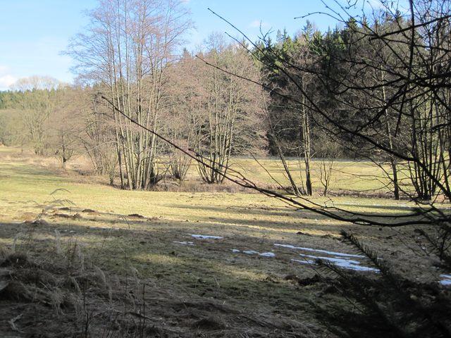 meandry Šlapanky v okolí Věžničky
