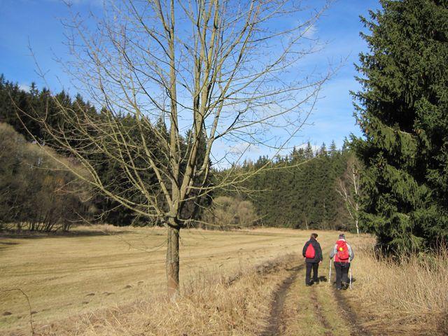 údolí Šlapanky pod vrchem Březina