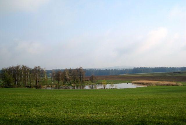 výhled přes Pužů rybník na kopec Rosička se zatím neviditelnou rozhlednou