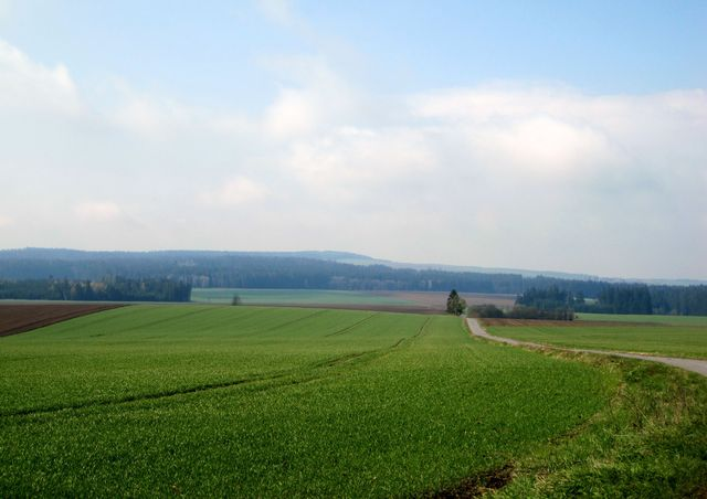 výhled od Matějova na vrch Blažkov v dálce