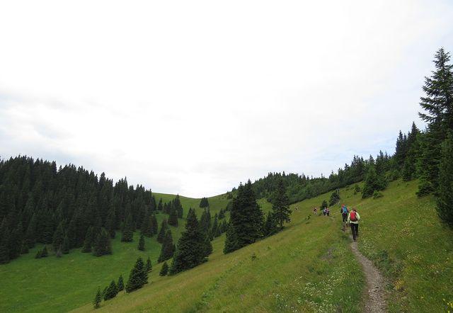 výstup na Skalní Alpu