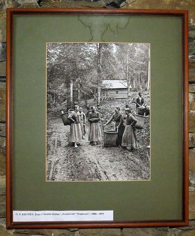 """Ženy s """"lesním zbožím"""" - fotografoval F. Krátký"""