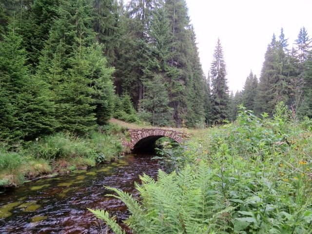 vodní kanál dřív sloužil pro plavení dřeva, od 30. let 20. století přivádí vodu pro elektrárnu Vydra